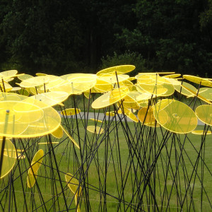 lindenbosch-tuinen007-300x300